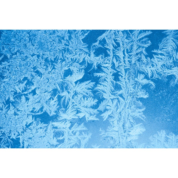 'Elegant Pattern of Frost on Window' Abstract Canvas Wall Art