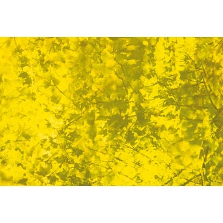 'Yellow Textured' Abstract Canvas Wall Art