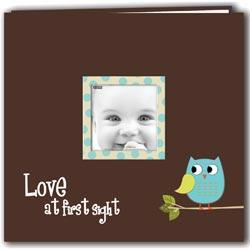 Baby Owl Printed Design Postbound Scrapbook Album 12 X12 - Blue