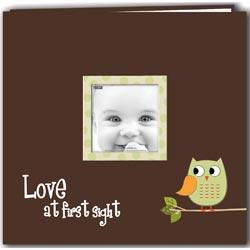 Baby Owl Printed Design Postbound Scrapbook Album 12 X12 - Green