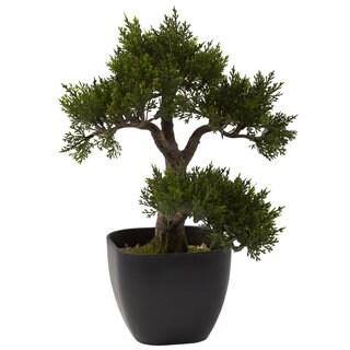 15-inch Cedar Bonsai Decorative Plant