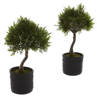 Cedar Bonsai and Planter Decorative Plants (Set of 2)