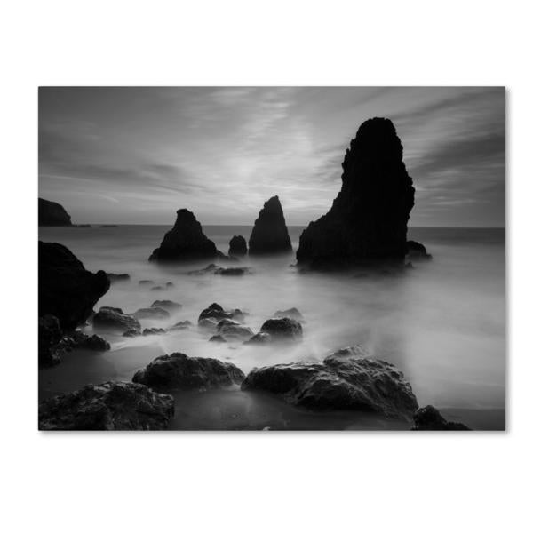 Share email Black and white canvas art