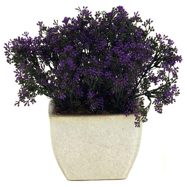 Faux Purple Boxwood and Cream Ceramic Planter Decoration