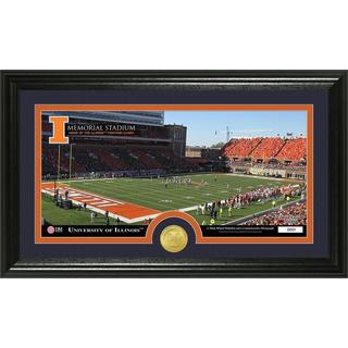 University Of Illinois Stadium Bronze Coin Panoramic Photo Mint