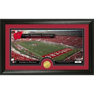 University of Wisconsin Stadium Bronze Coin Panoramic Photo Mint
