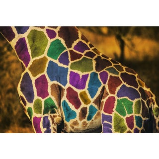 'Color Spots Giraffe' Modern Abstract Canvas Print Wall Art