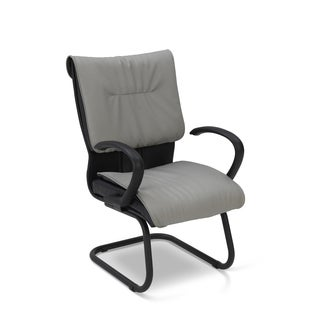 Ergocraft Saddle Medium Back Sled Base Guest Chair