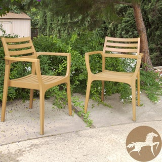 Christopher Knight Home Lombardi Outdoor Eucalyptus Wood Chairs (Set of 2)
