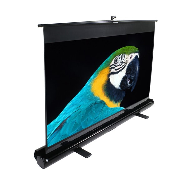 "ezCinema 56"" 16:10 Portable Projection Screen (30 x 48)"
