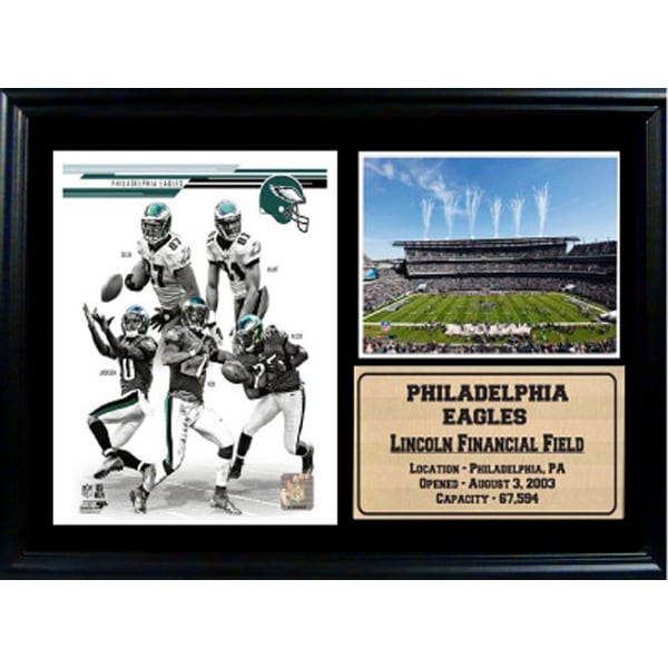 2013 Philadelphia Eagles 12x18 Photo Stat Frame
