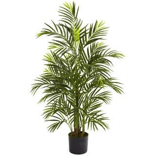 3.5-foot Areca Palm (Indoor/Outdoor)