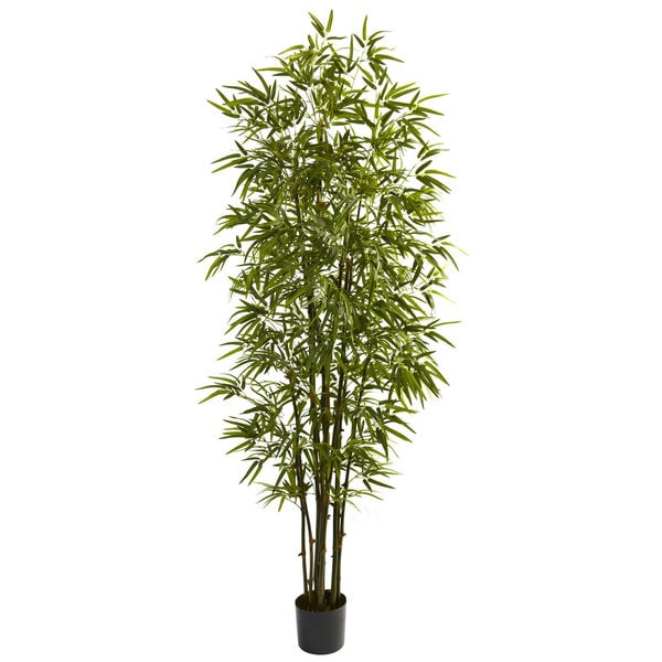 Green Bamboo 7-inch Tree