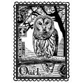 Crafty Individuals Unmounted Rubber Stamp 4.75 X7 Pkg - Airmail Owl