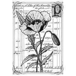 Crafty Individuals Unmounted Rubber Stamp 4.75 X7 Pkg - Pretty Poppy