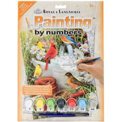 Junior Small Paint By Number Kit 8.75 X11.75 - Garden Birds