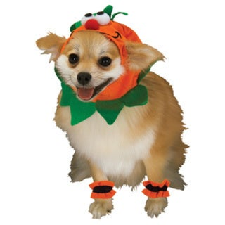 Rubies Pumpkin Headpiece with Cuffs Pet Costume