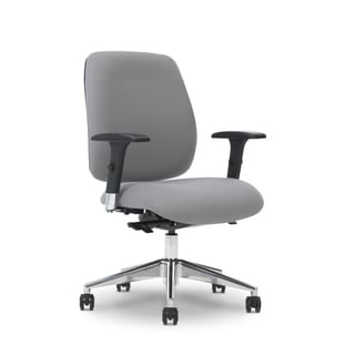 Ergocraft Viva Medium Back Task Chair