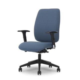 Ergocraft Viva Medium Back Task Chair