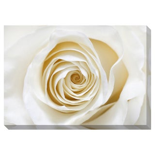 White Rose Oversized Gallery Wrapped Canvas