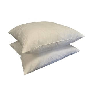 21-inch Square Feather Pillow Insert (Set of 2)