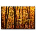 CATeyes 'Delicious Autumn' Canvas Art