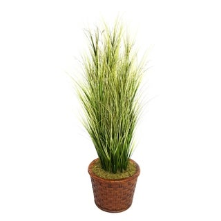 "Laura Ashley 65"" Tall Onion Grass with Twigs in 17"" Fiberstone Planter"