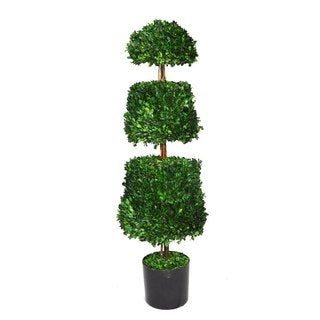Laura Ashley 44-inch Preserved Natural Boxwood Cone Topiary