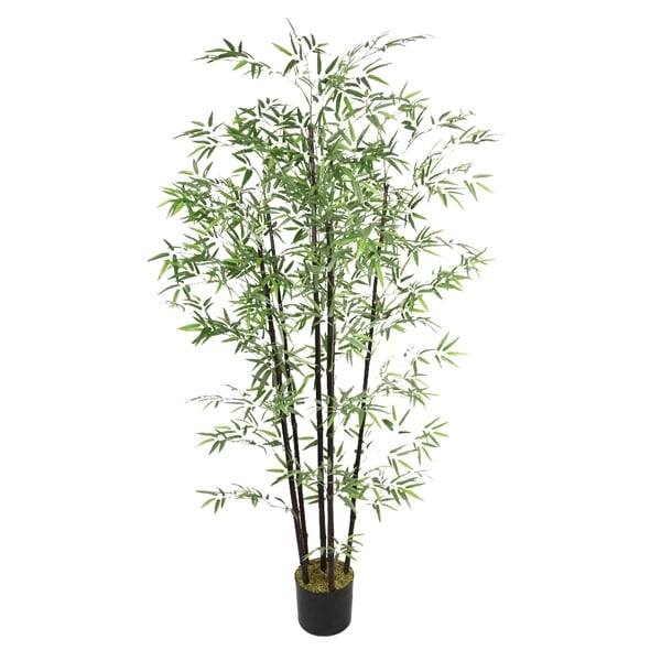 Laura Ashley 6-foot Bamboo Tree with Black Poles