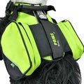Wacky Paws Sport Pet Travel Harness (Green)