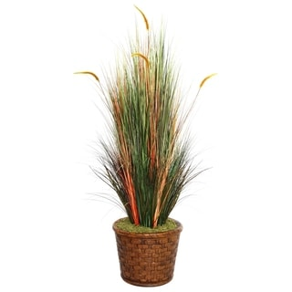 "Laura Ashley 65"" Tall Onion Grass with Cattails in 17"" Fiberstone Planter"