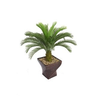 "Laura Ashley 58"" Tall Cycas Palm Tree in 17"" Fiberstone Planter"