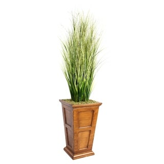 "Laura Ashley 79"" Tall Onion Grass with Twigs in 16"" Fiberstone Planter"