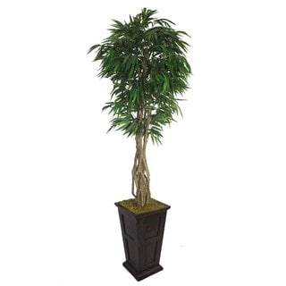 "Laura Ashley 97"" Tall Willow Ficus with Multiple Trunks in 16"" Fiberstone Planter"