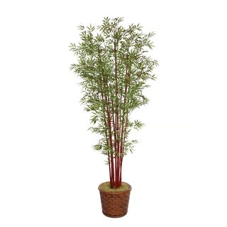 "Laura Ashley 97"" Tall Harvest Bamboo Tree in 17"" Fiberstone Planter"