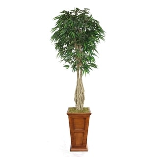 "Laura Ashley 84"" Tall Willow Ficus with Multiple Trunks in 16"" Fiberstone Planter"