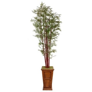 "Laura Ashley 111"" Tall Harvest Bamboo Tree in 16"" Fiberstone Planter"