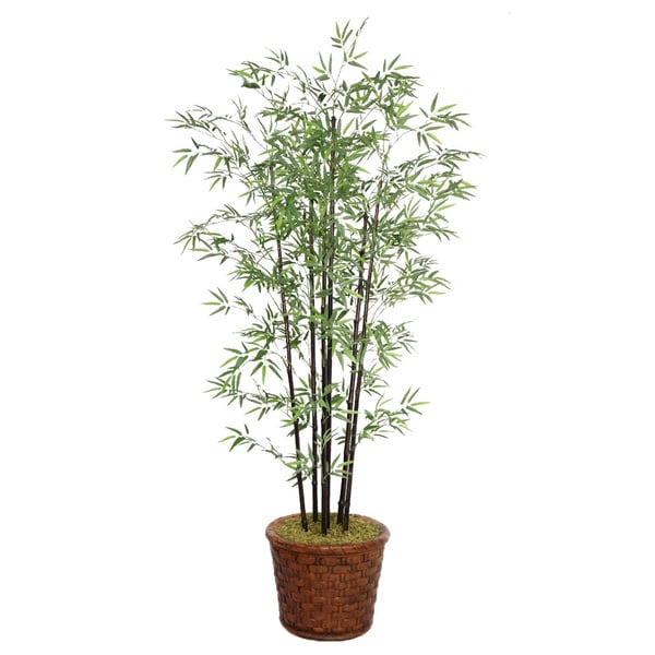 Laura Ashley 77-inch Tall Black Bamboo Tree Fiberstone Planter