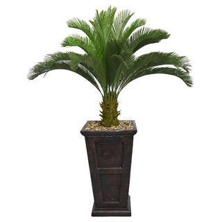 Laura Ashley 67-inch Tall Cycas Palm Tree in Fiberstone Planter
