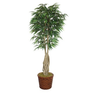 Laura Ashley 83-inch Tall Willow Ficus with Multiple Trunks in Fiberstone Planter