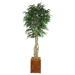 Laura Ashley 87-inch Tall Willow Ficus with Multiple Trunks