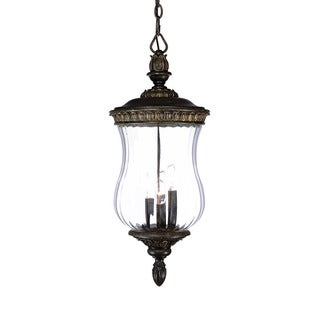 Bel Air Collection Hanging Lantern 4-light Outdoor Black Coral Light Fixture