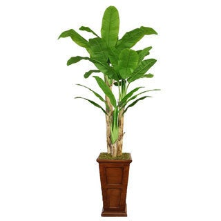 Laura Ashley 91-inch Tall Banana Tree Fiberstone Planter