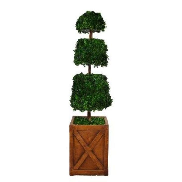 Laura Ashley 53-inch Preserved Natural Spiral Boxwood Cone Topiary in 13-inch Fiberstone Planter