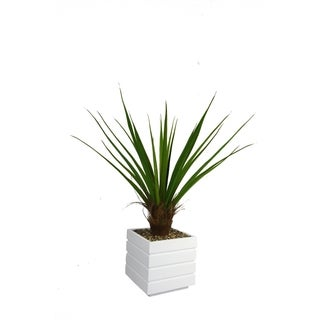 Laura Ashley 50-inch Tall Agave Cocoa Skin Plant and 14-inch Fiberstone Planter