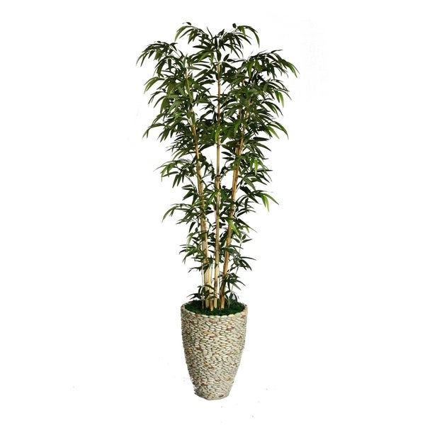 "Laura Ashley 86"" Tall Natural Bamboo Tree in 16"" Fiberstone Planter 11856995"