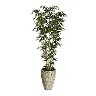 "Laura Ashley 86"" Tall Natural Bamboo Tree in 16"" Fiberstone Planter"