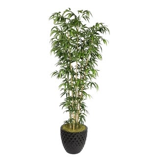 "Laura Ashley 78"" Tall Natural Bamboo Tree in 16"" Fiberstone Planter"