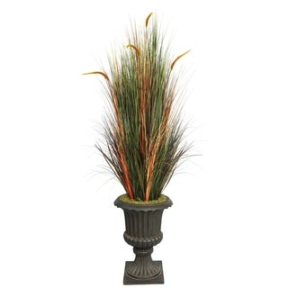 "Laura Ashley 74"" Tall Onion Grass with Cattails in 16"" Fiberstone Planter"