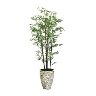 "Laura Ashley 86"" Tall Black Bamboo Tree in 16"" Fiberstone Planter"
